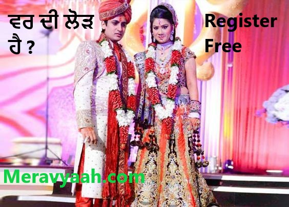 Nri Proffesional Couple